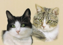 Click here to go to the Cat Portraits Gallery