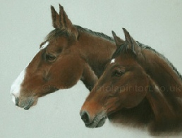 Click here to go to the Equine Paintings Gallery